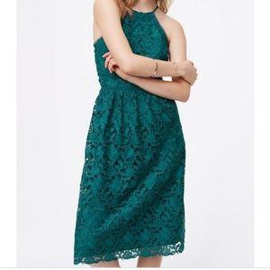 Dark Teal Midi Lace Dress